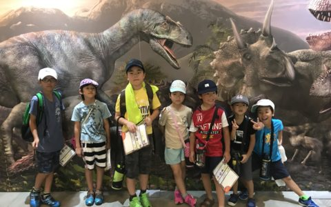 8-5 1 Dinosaur World
