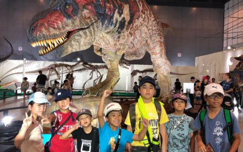 8-5 2 Dinosaur World